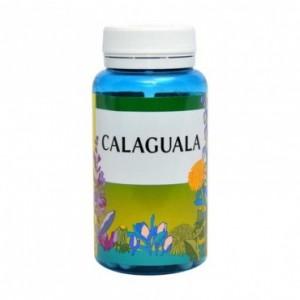 Calaguala 90 Comprimidos Espadiet